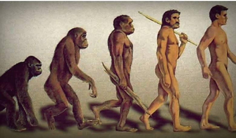 Manusia Berasal dari Tanah, Seperti Tumbuhan dan Hewan