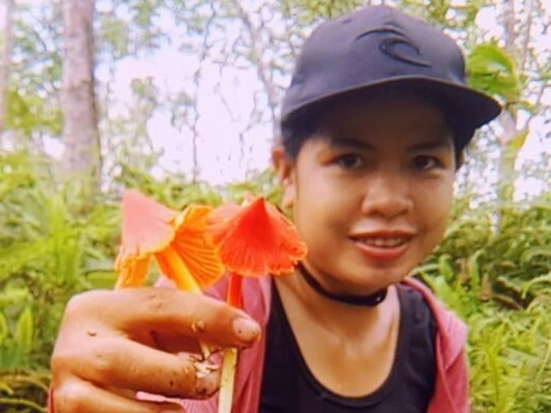 Kulat Sio, Jamur Hutan Kalimantan