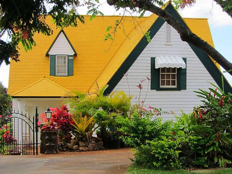 "The New Order Story [7] Yellow Tile, ""Kuningisasi"" Means Yellowization"