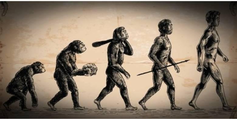 Manusia, Makhluk Hidup Bagian dari Siklus Semesta Alam