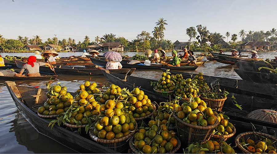 Jeruk Tebas yang Bukan Jeruk Pontianak, Hancur Akibat Tata Niaga