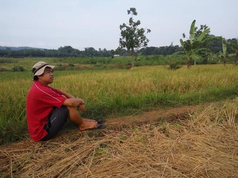 Petani Indonesia dan Tantangannya